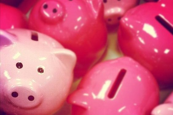 piggy banks - credit union vs bank