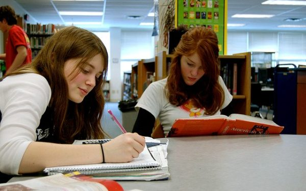 Two high school students studying in library