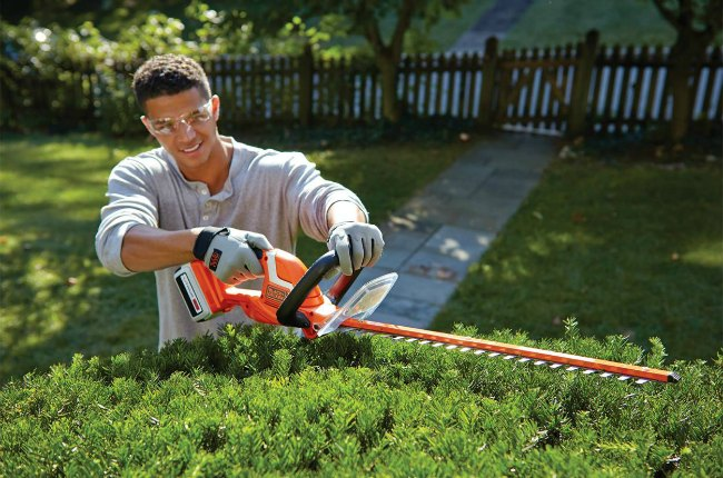 man using hedge clippers