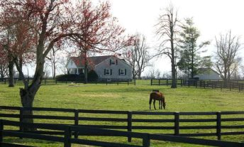 horse ranch in kentucky - homeowners insurance