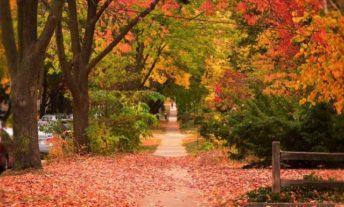 autumn in madison wisconsin