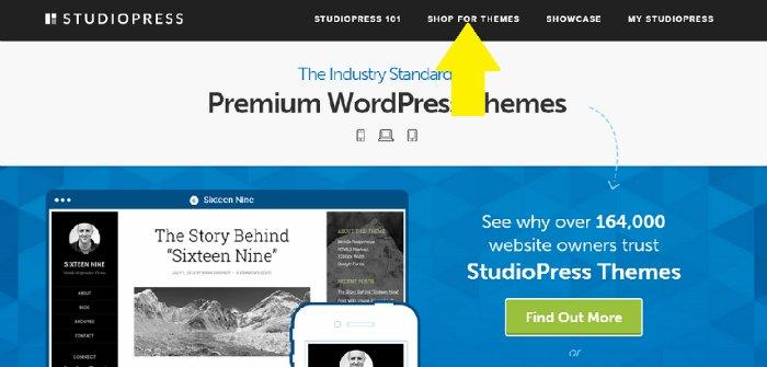 how to start a blog - theme screenshot