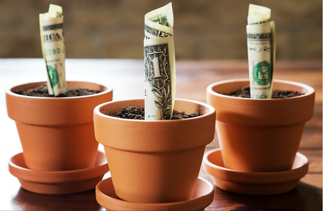 dollars in flower pots - best time to start investing