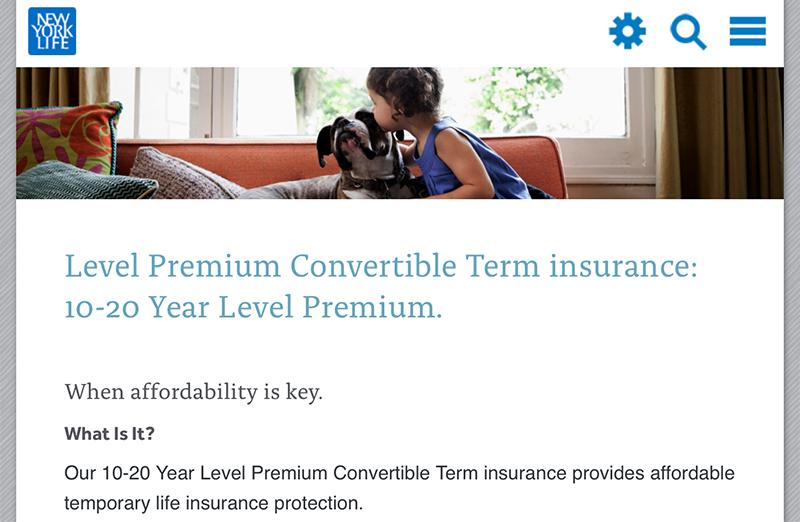 Screenshot of New York Life Term Life Insurance