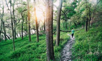 walking alone on path in woods