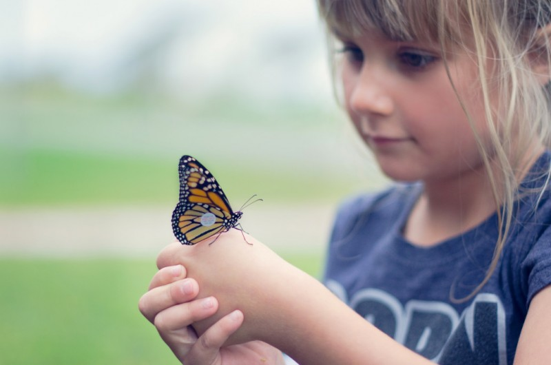 young girl holding butterfly