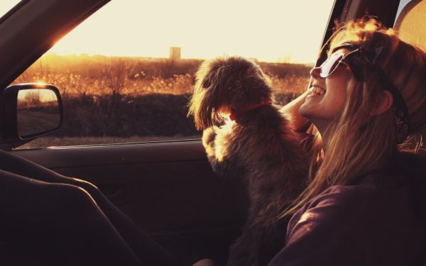 girl and dog looking out window of car