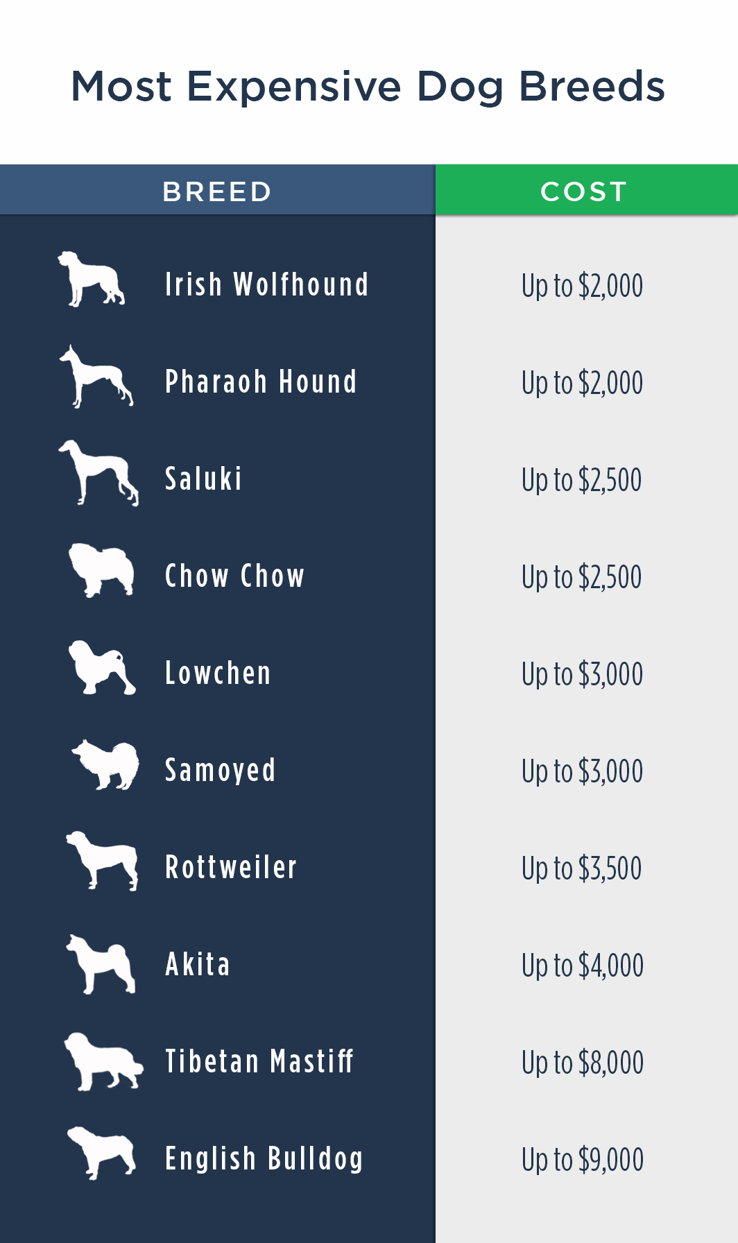 Pet Ownership Costs Guide for 2018 - The Simple Dollar