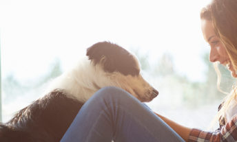 Image shows a woman petting her dog. This is for the guide to financial aid for pets.