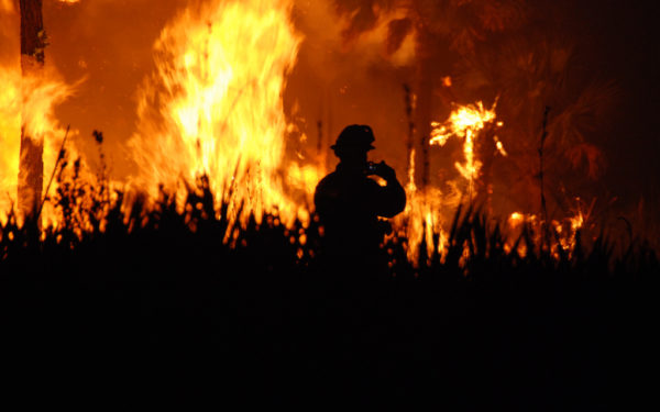 wildfire insurance claims