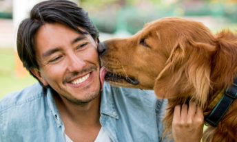 Dog with Happy Man