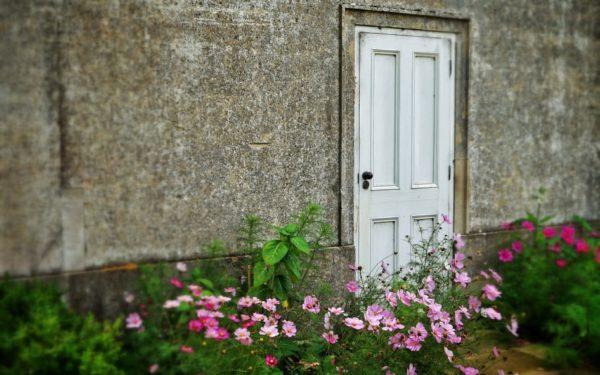 back door roth ira