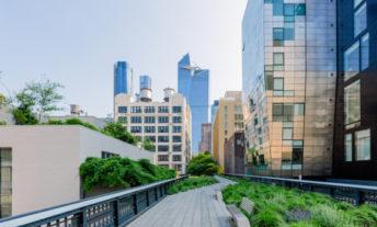 Highline park view in New York